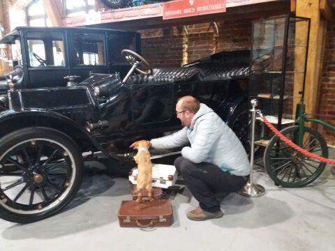 Czworonogi wzięły udział w sesji w Muzeum Motoryzacji Topacz