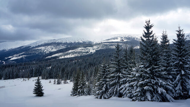 """The Karkonosze range is also often referred to in English as the """"Giant Mountains"""""""
