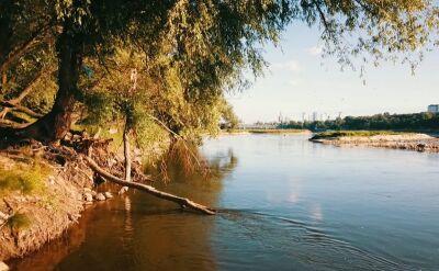 Niski poziom wody w polskich rzekach. Naukowcy alarmują