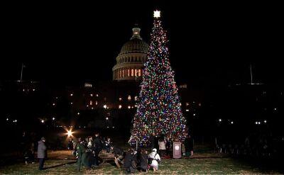 Zapalenie lampek na świątecznym drzewku w pobliżu Kongresu Stanów Zjednoczonych
