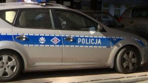 Radiowóz potrącił psa, kierowca odjechał. Policja: badamy sprawę