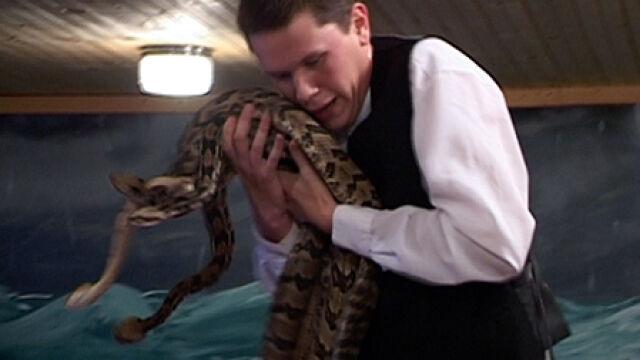 """Trzymają węże. """"Zstąpił Pan"""""""