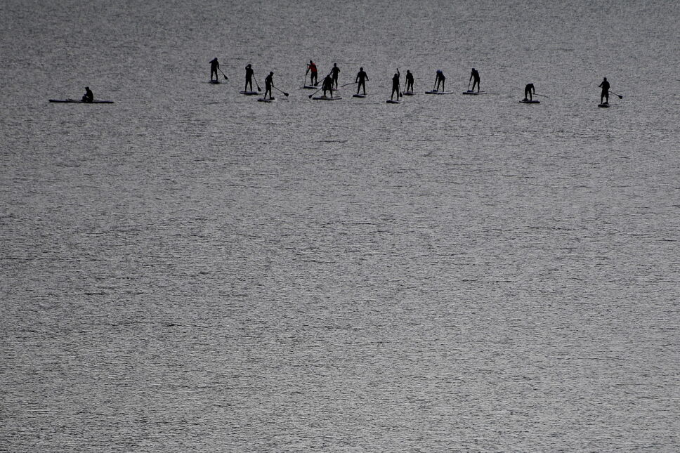 Wioślarze na jeziorze Sylvensteinsee w Niemczech