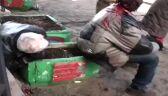 Park Maryjski po ataku Berkutu (drastyczne zdjęcia)