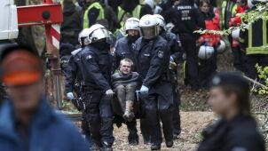 Policja przeciwko obrońcom lasu.