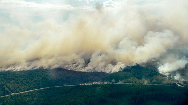 Polscy strażacy pomogą gasić pożary lasów w Szwecji.