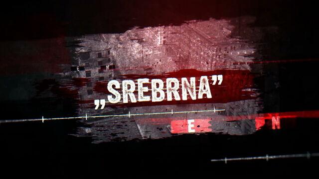 Historia Srebrnej