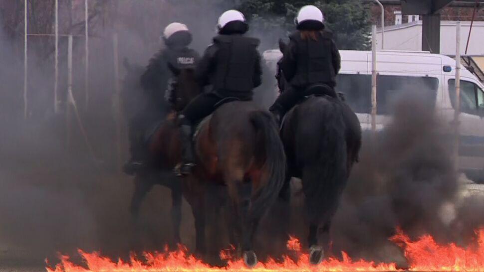 Ogień, dym, wybuchy i strzały. Policja przyzwyczaja konie do starć z chuliganami