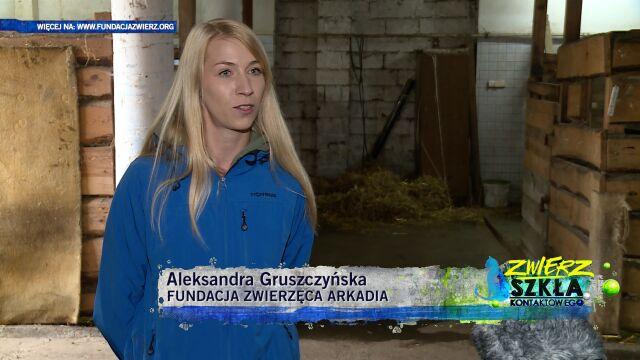 Aleksandra Gruszczyńska: świadoma adopcja zwierząt