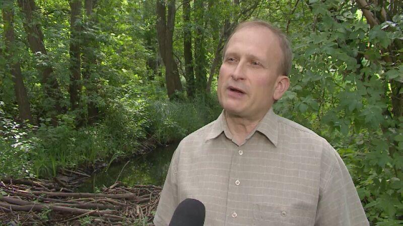 Dr Andrzej Kepel o roli bobra w środowisku