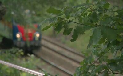 """Konferencja prasowa odkrywców """"złotego pociągu"""""""