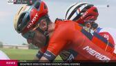 Nibali przejdzie do Trek-Segafredo