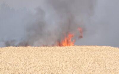 Pożar w okolicach Gostynia