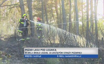 Pożar lasu pod Legnicą. 18 zastępów w akcji