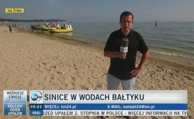 Sinice w wodach Bałtyku (wideo z 31.07.2018)