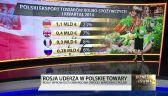 Polskie owoce na rosyjskich stołach. Ile eksportujemy?