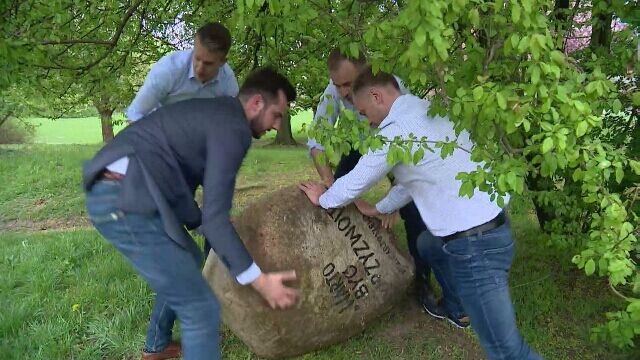 Politycy PO znaleźli kamień na wybiegu dla psów