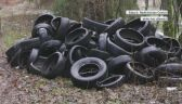 Tysiąc opon wyrzuconych w lesie
