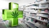 Medyczna marihuana zalegalizowana, ale nie da się jej kupić. Dlaczego?