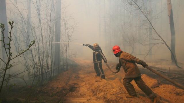 Czarnobyl. Pożary lasów wokół elektrowni. Strażacy walczą z żywiołem - Fakty TVN online