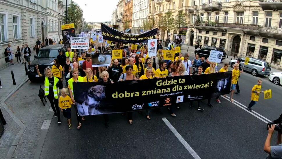 Obrońcy praw zwierząt protestują. Mówią, że zwyciężyło lobby futrzarskie