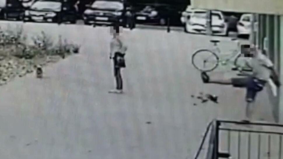 Strażnik miejski po służbie kopnął psa. Mężczyzna stracił pracę