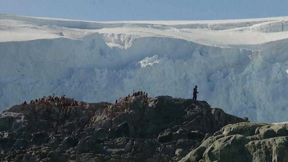 """Ponad 20 stopni Celsjusza na Antarktydzie. """"To robi piorunujące wrażenie"""""""