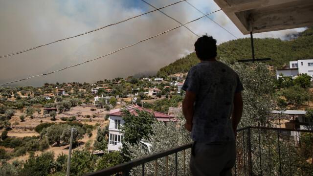 Pożary w Turcji: zginęło co najmniej 8 osób. Pożary także na Rodos, Peloponezie i we Włoszech - Fakty TVN online