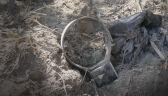 Ktoś zabił wilka Miko