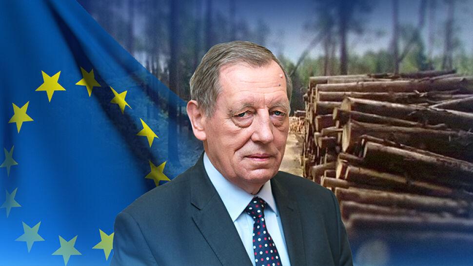 Za dalszą wycinkę Puszczy Białowieskiej Polskę może czekać nawet kilkanaście milionów euro kary