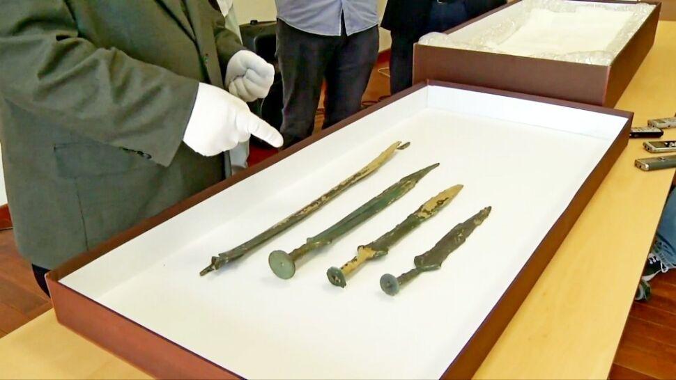 Szukali grzybów, znaleźli skarb. Cztery bezcenne miecze sprzed 3000 lat leżały w ziemi