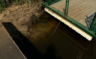 """Polskie rzeki wysychają. """"O tej porze roku nigdy nie było tak niskiego poziomu wody"""""""