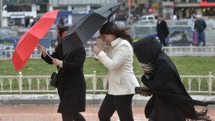 Wydano ostrzeżenia przed silnym wiatrem