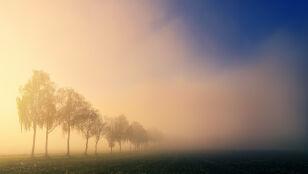 Gęste mgły. Prognoza pogodowych zagrożeń