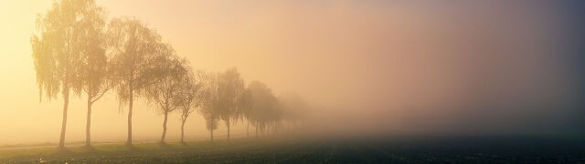 Gęste mgły w części kraju. Prognoza zagrożeń
