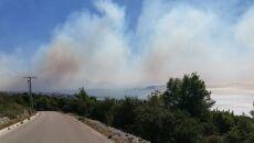 Pożary lasów rozszalały się w Chorwacji