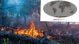 Zwiększyła się liczba pożarów na Ziemi. NASA monitoruje sytuację