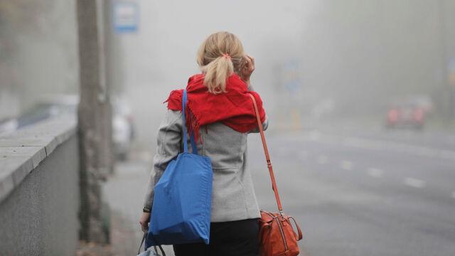 Mglisto, pochmurno i ciepło jak w lecie
