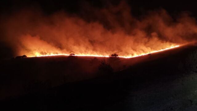 Las Kubusia Puchatka stanął w płomieniach